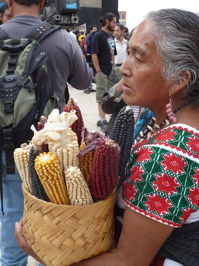 Doña Amalia Salas with native corn. (WNV / Alex Mensing)